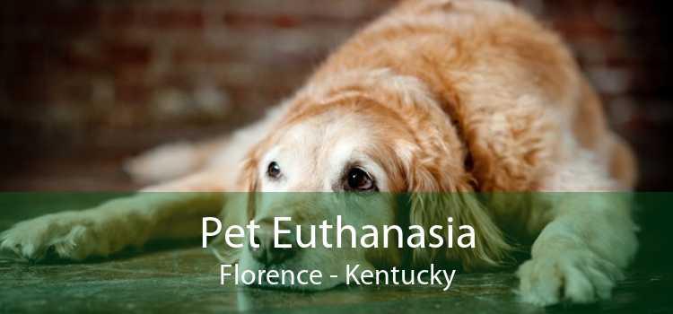 Pet Euthanasia Florence - Kentucky