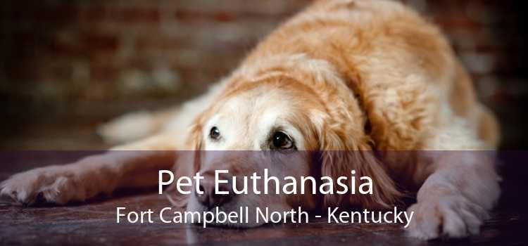 Pet Euthanasia Fort Campbell North - Kentucky