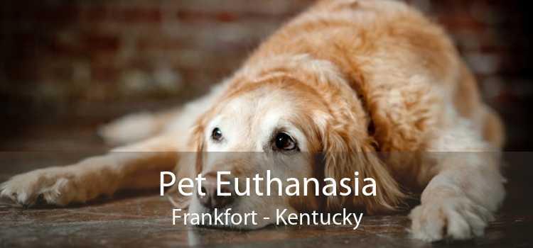 Pet Euthanasia Frankfort - Kentucky