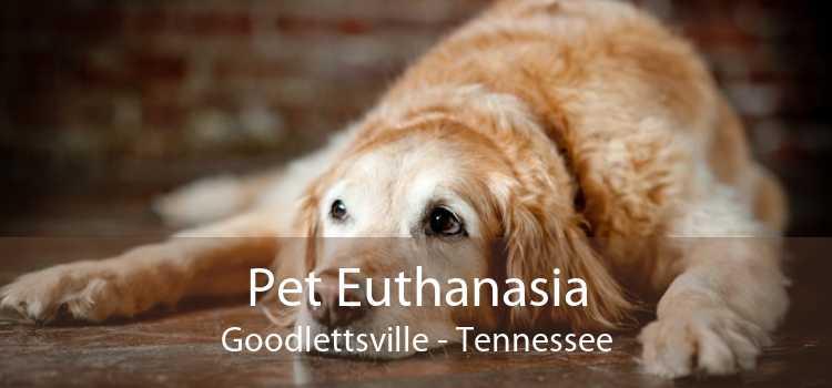 Pet Euthanasia Goodlettsville - Tennessee