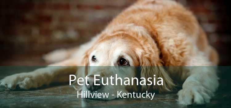 Pet Euthanasia Hillview - Kentucky