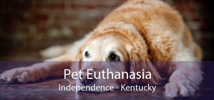 Pet Euthanasia Independence - Kentucky