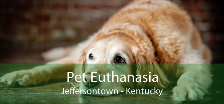 Pet Euthanasia Jeffersontown - Kentucky