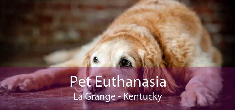 Pet Euthanasia La Grange - Kentucky