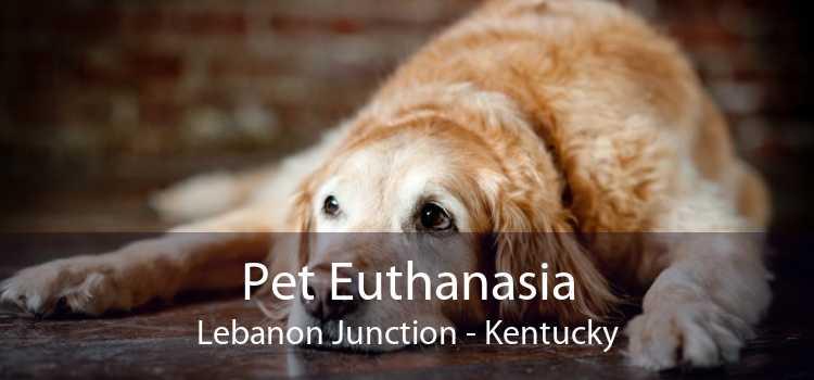 Pet Euthanasia Lebanon Junction - Kentucky