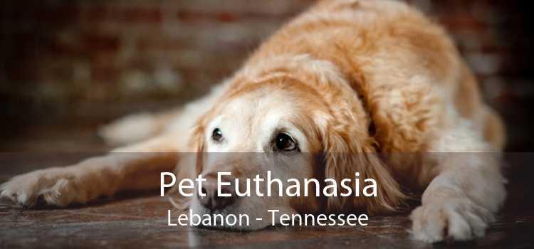 Pet Euthanasia Lebanon - Tennessee
