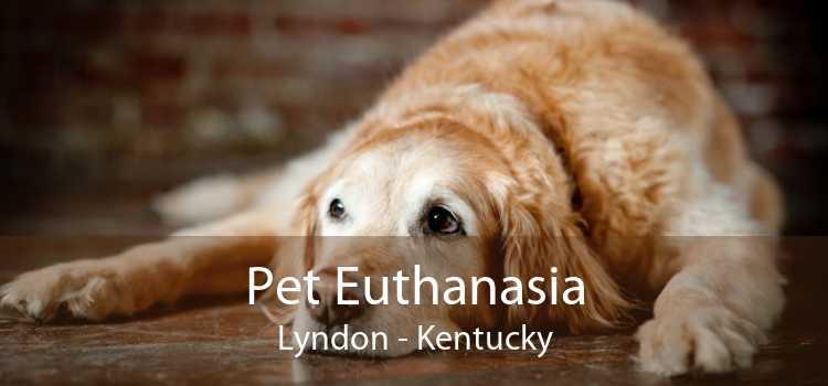Pet Euthanasia Lyndon - Kentucky