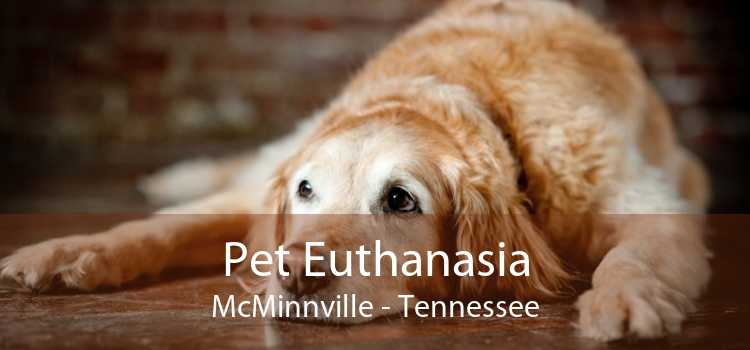 Pet Euthanasia McMinnville - Tennessee
