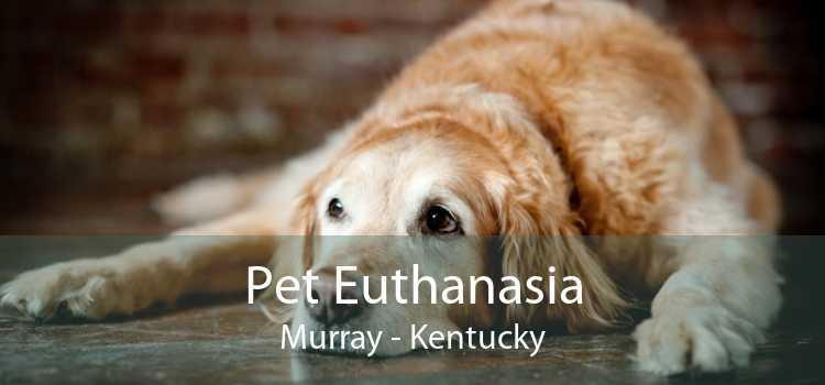 Pet Euthanasia Murray - Kentucky