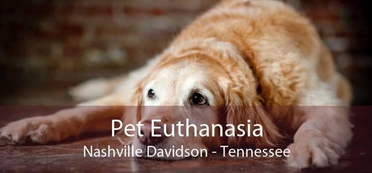 Pet Euthanasia Nashville Davidson - Tennessee
