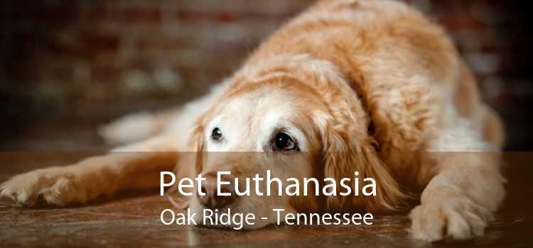 Pet Euthanasia Oak Ridge - Tennessee