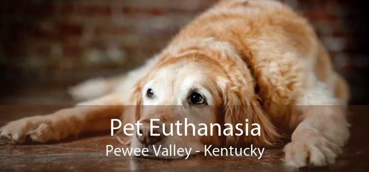 Pet Euthanasia Pewee Valley - Kentucky