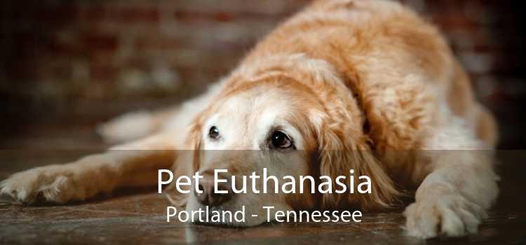 Pet Euthanasia Portland - Tennessee