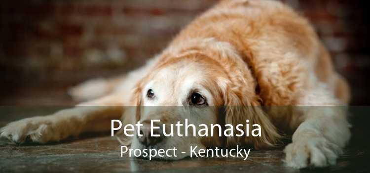 Pet Euthanasia Prospect - Kentucky