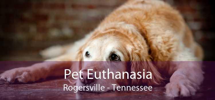 Pet Euthanasia Rogersville - Tennessee