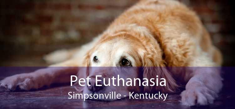 Pet Euthanasia Simpsonville - Kentucky