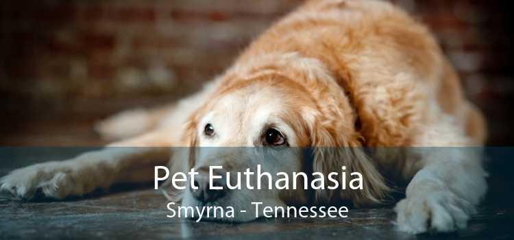Pet Euthanasia Smyrna - Tennessee