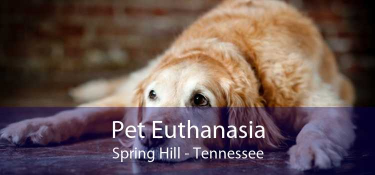 Pet Euthanasia Spring Hill - Tennessee