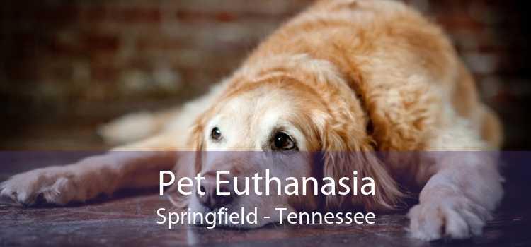 Pet Euthanasia Springfield - Tennessee
