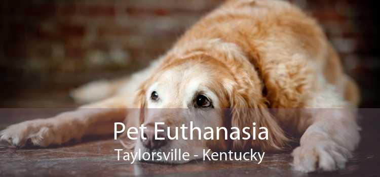 Pet Euthanasia Taylorsville - Kentucky