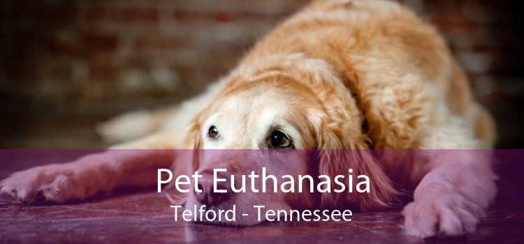 Pet Euthanasia Telford - Tennessee