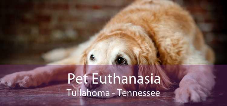 Pet Euthanasia Tullahoma - Tennessee