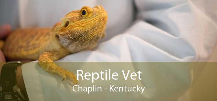 Reptile Vet Chaplin - Kentucky