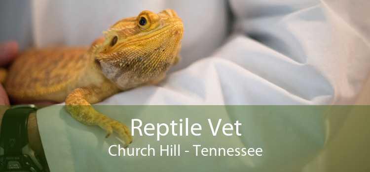 Reptile Vet Church Hill - Tennessee