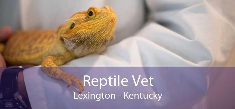 Reptile Vet Lexington - Kentucky