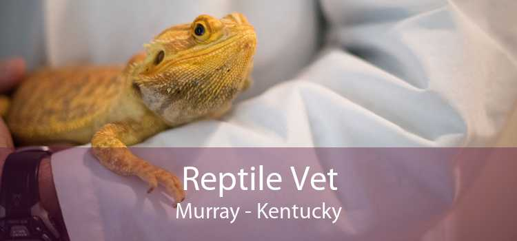 Reptile Vet Murray - Kentucky