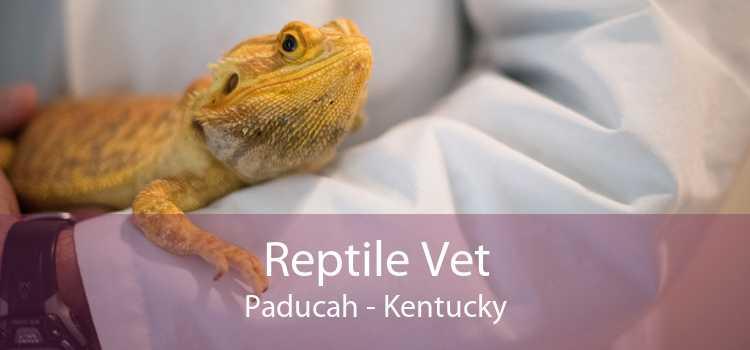 Reptile Vet Paducah - Kentucky