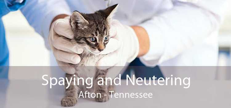 Spaying and Neutering Afton - Tennessee