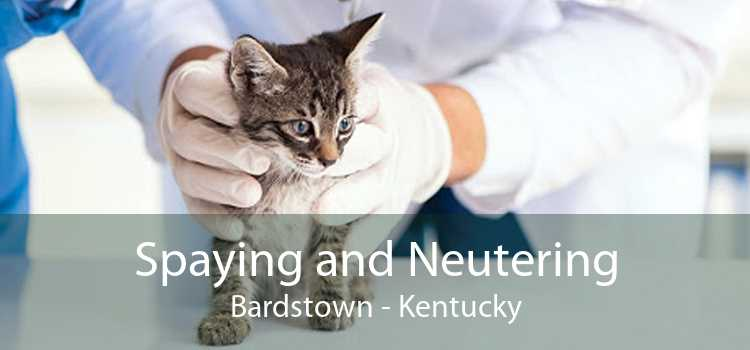Spaying and Neutering Bardstown - Kentucky