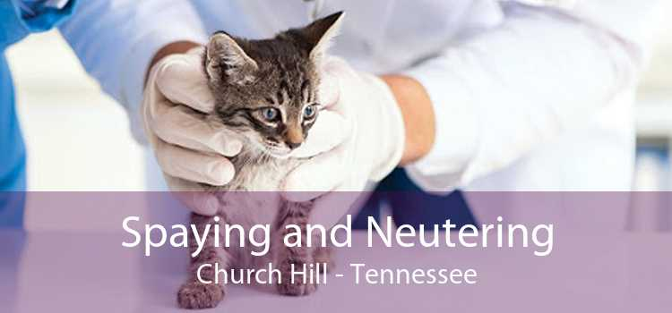 Spaying and Neutering Church Hill - Tennessee