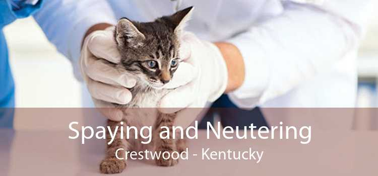 Spaying and Neutering Crestwood - Kentucky