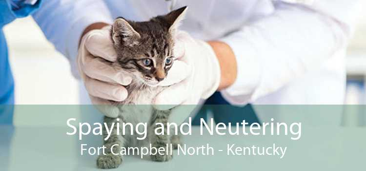 Spaying and Neutering Fort Campbell North - Kentucky