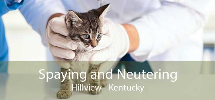 Spaying and Neutering Hillview - Kentucky