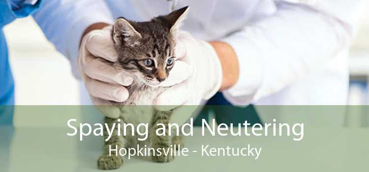 Spaying and Neutering Hopkinsville - Kentucky