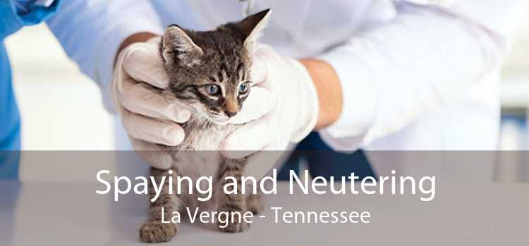 Spaying and Neutering La Vergne - Tennessee