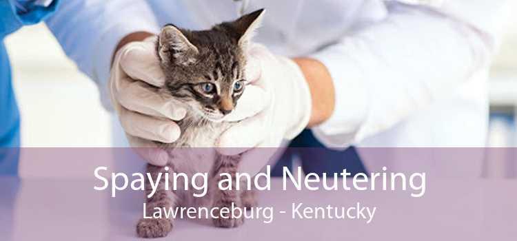 Spaying and Neutering Lawrenceburg - Kentucky
