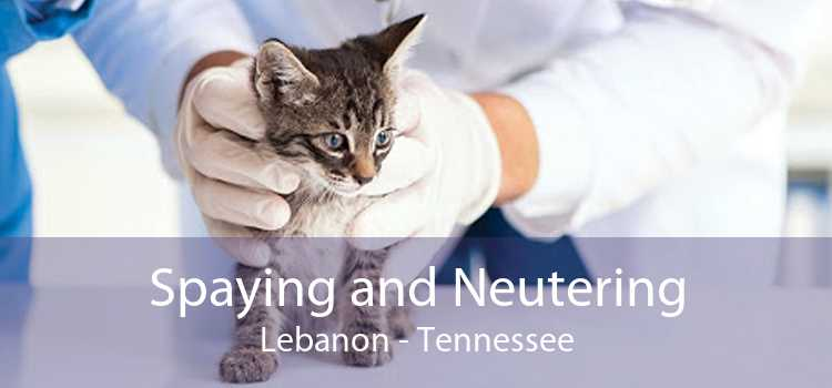 Spaying and Neutering Lebanon - Tennessee