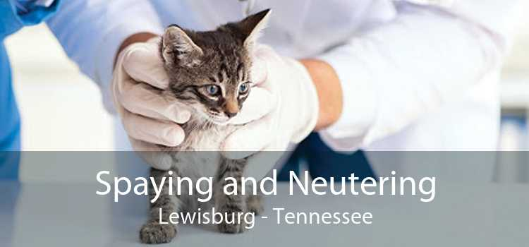 Spaying and Neutering Lewisburg - Tennessee