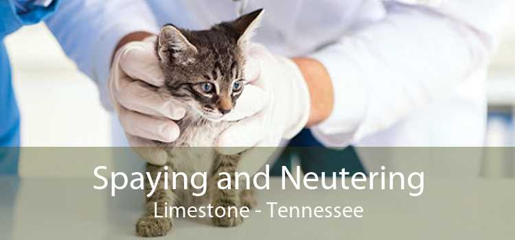 Spaying and Neutering Limestone - Tennessee