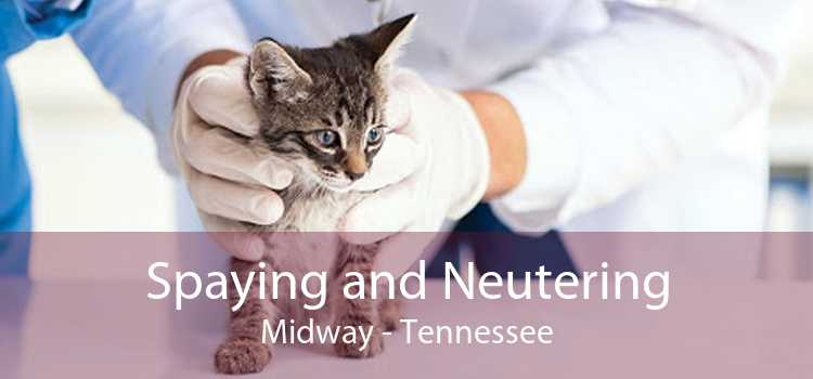 Spaying and Neutering Midway - Tennessee