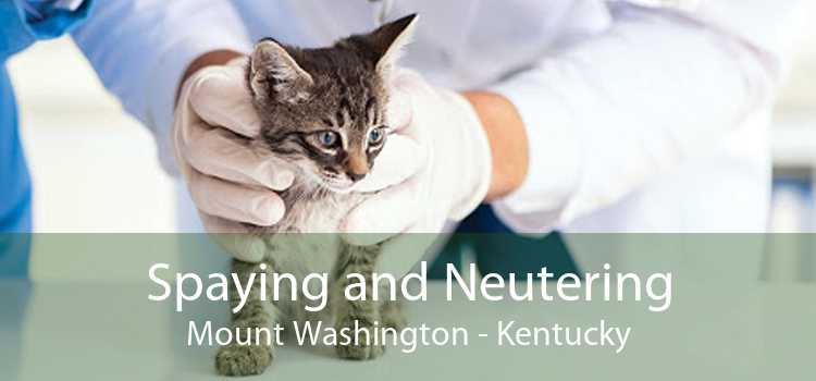 Spaying and Neutering Mount Washington - Kentucky