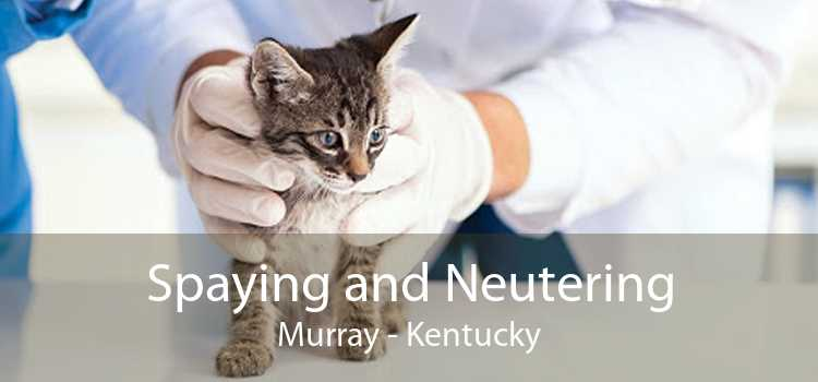 Spaying and Neutering Murray - Kentucky
