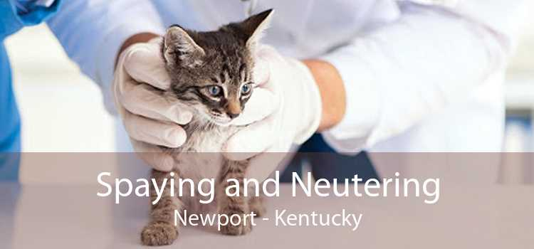 Spaying and Neutering Newport - Kentucky