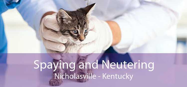 Spaying and Neutering Nicholasville - Kentucky
