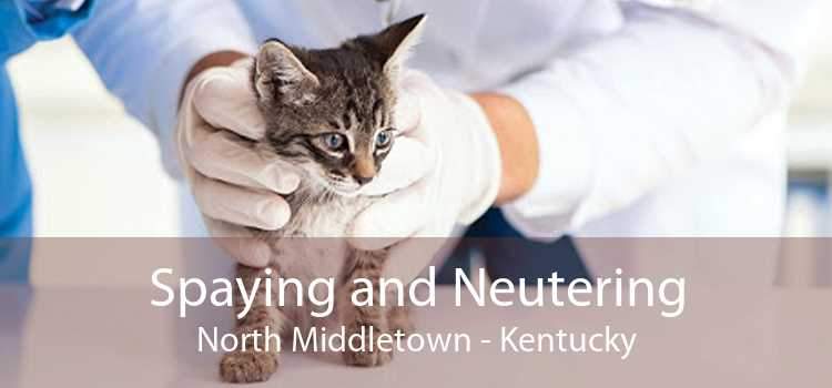 Spaying and Neutering North Middletown - Kentucky