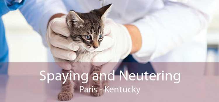 Spaying and Neutering Paris - Kentucky